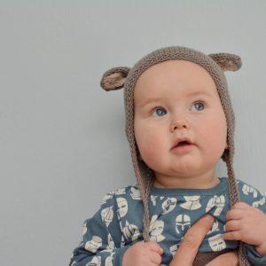 Bear_cap_model
